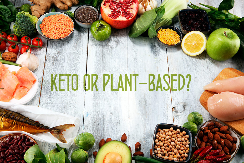 atkins vs plant based diet